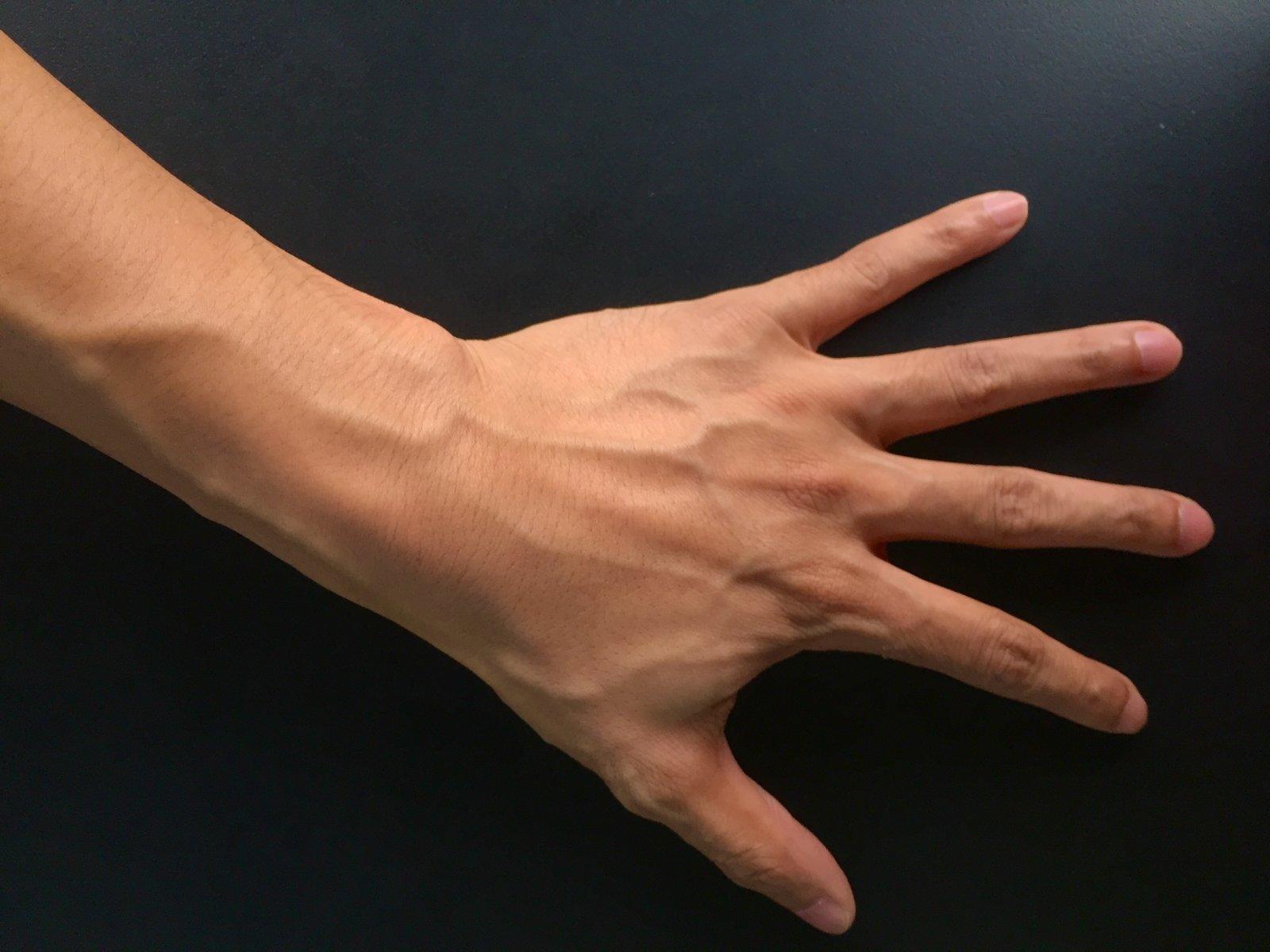 Восковая модель ладони обманула систему распознавания личности побиометрическим данным