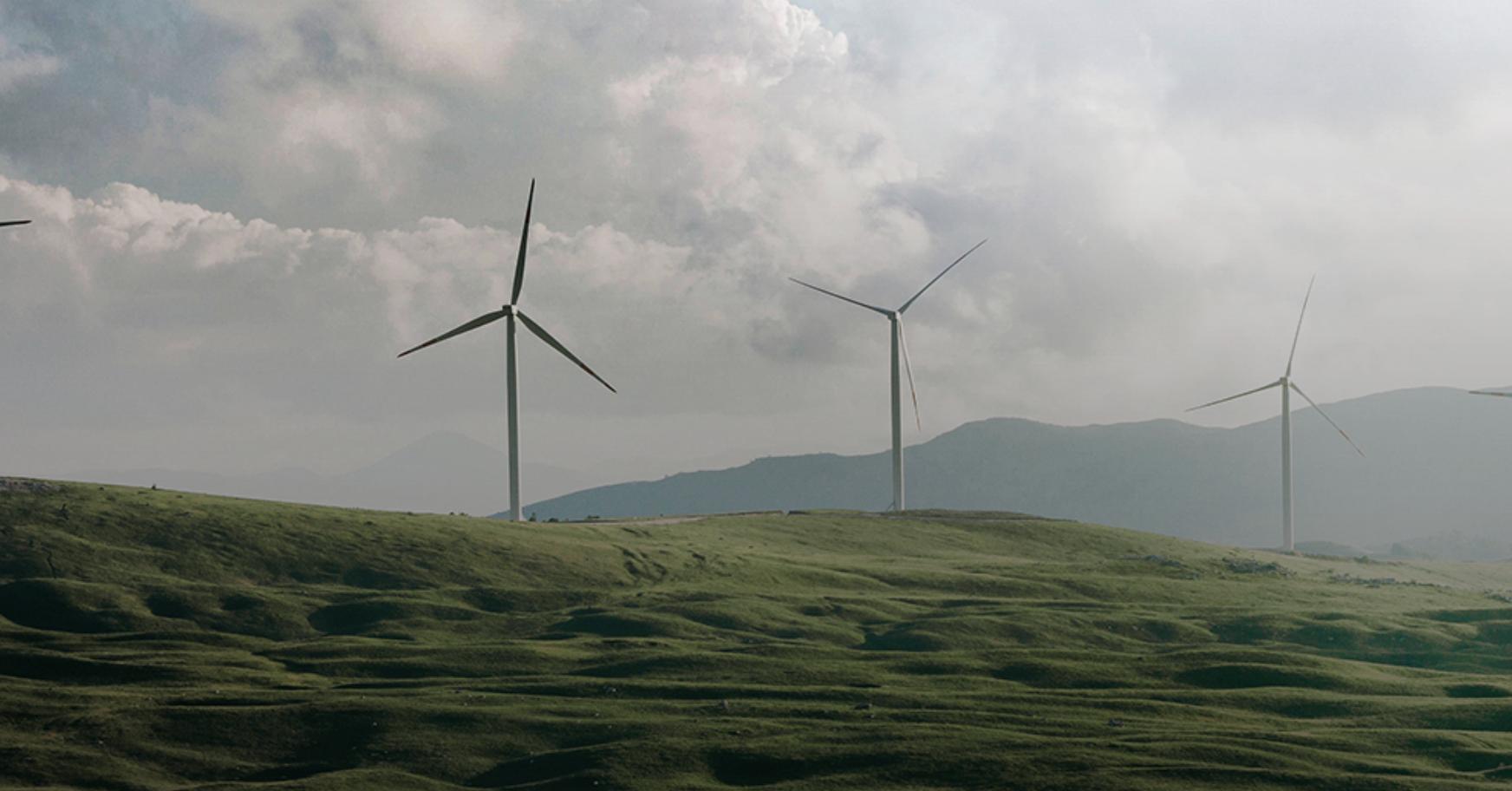 Германия стала первой крупной экономикой, которая отказывается от угля и ядерной энергетики