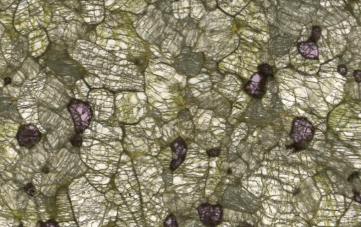 Геологи розробили нову теорію про стан Землі мільярди років тому