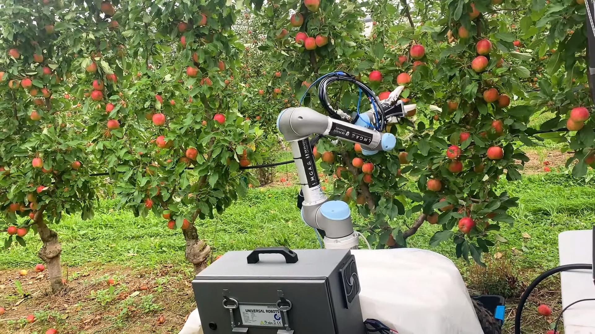 Посмотрите на робота, который собирает яблоки: он справляется за 7 секунд