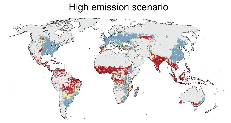 Третина продуктів харчування і третина лісів зникнуть через зміни клімату