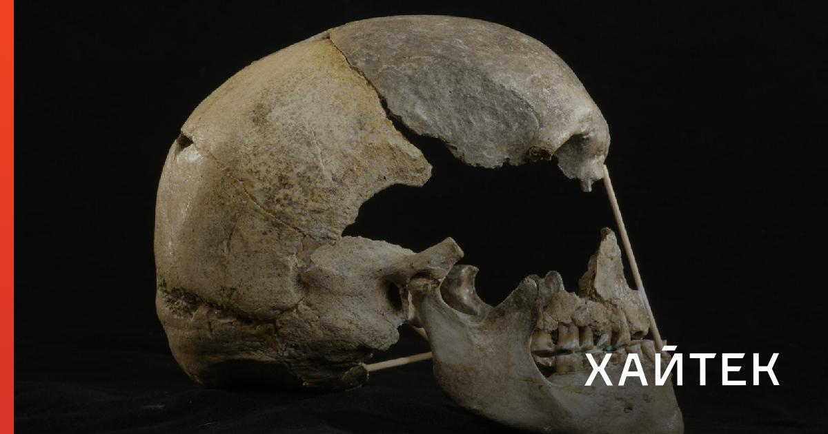 77e07cf0c69059296e3932e7aa60277a fb Ученые воссоздали самый древний геном европейца